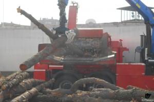 IDForestal Astilladora Trituradora